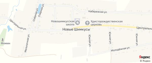 Центральная улица на карте села Новые Шимкусы с номерами домов