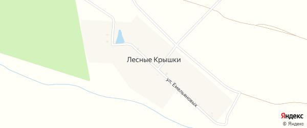 Улица Емельяновых на карте деревни Лесные Крышки с номерами домов