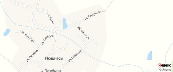 Заречная улица на карте деревни Нюшкас с номерами домов