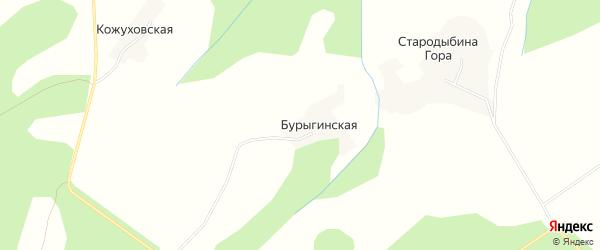 Карта Бурыгинской деревни в Архангельской области с улицами и номерами домов