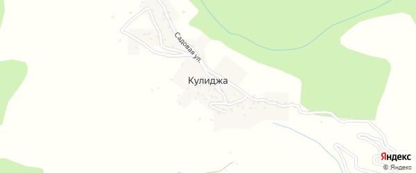 Центральная улица на карте села Кулиджа с номерами домов