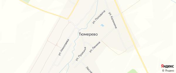 Карта деревни Тюмерево в Чувашии с улицами и номерами домов