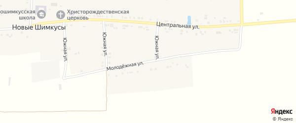 Молодежная улица на карте села Новые Шимкусы с номерами домов