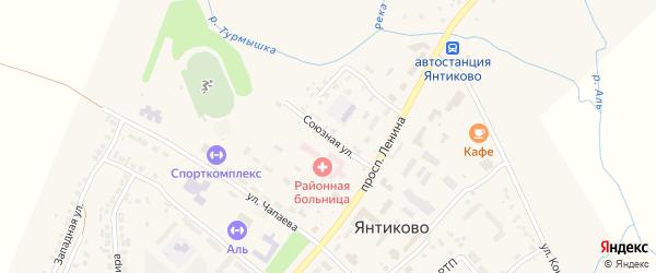 Союзная улица на карте села Янтиково с номерами домов