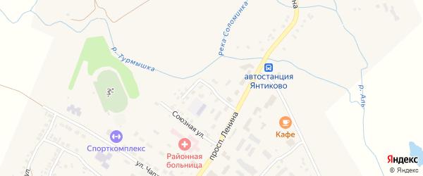 Союзный переулок на карте села Янтиково с номерами домов