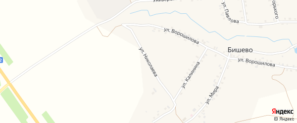 Улица Николаева на карте деревни Бишево с номерами домов