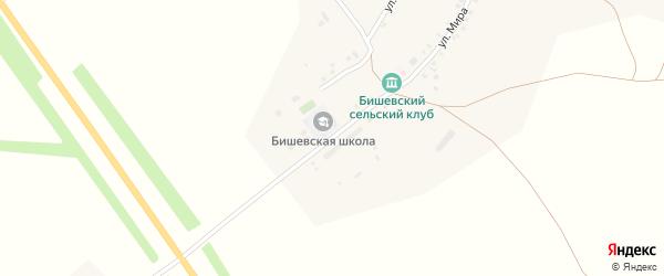 Новая улица на карте деревни Бишево с номерами домов