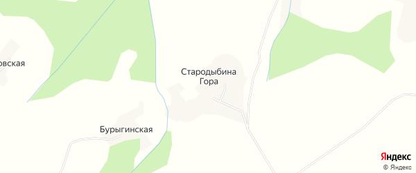 Карта деревни Стародыбиной Гора в Архангельской области с улицами и номерами домов
