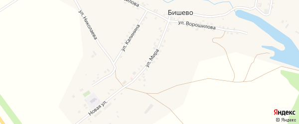 Улица Мира на карте деревни Бишево с номерами домов