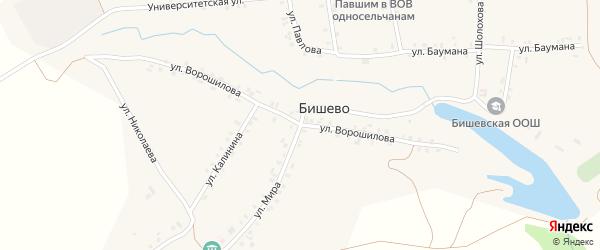 Улица Ворошилова на карте деревни Бишево с номерами домов