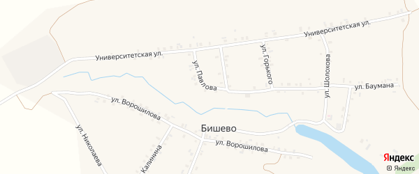 Улица Павлова на карте деревни Бишево с номерами домов