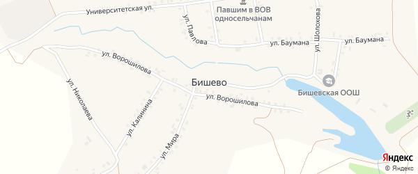 Молодежная улица на карте деревни Бишево с номерами домов
