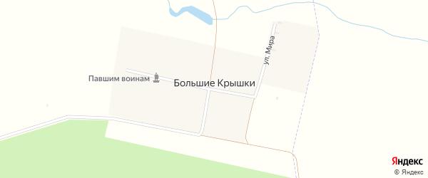 Улица Мира на карте деревни Большие Крышки с номерами домов