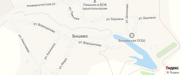 Улица Терешковой на карте деревни Бишево с номерами домов