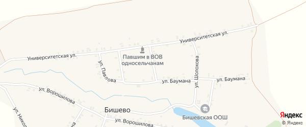 Улица Горького на карте деревни Бишево с номерами домов