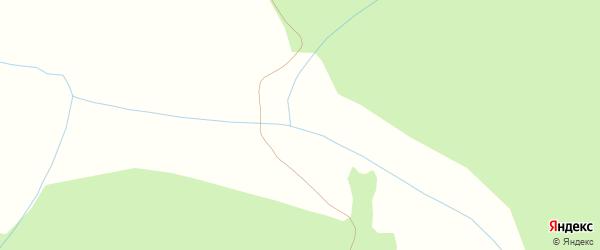 Пионерская улица на карте деревни Вторые Чекуры с номерами домов