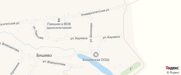 Улица Баумана на карте деревни Бишево с номерами домов