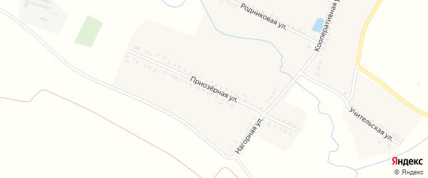 Приозерная улица на карте деревни Кильдюшево с номерами домов