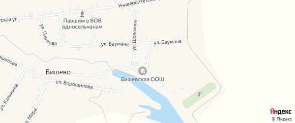 Школьная улица на карте деревни Бишево с номерами домов
