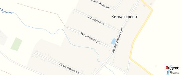 Родниковая улица на карте деревни Кильдюшево с номерами домов