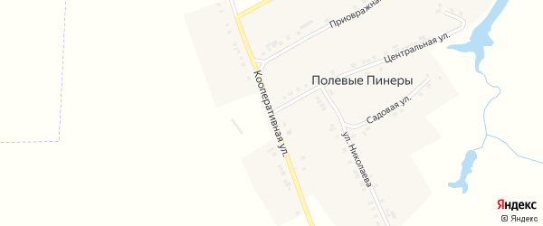 Кооперативная улица на карте деревни Полевые Пинеры с номерами домов