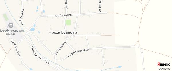 Улица Пушкина на карте деревни Новое Буяново с номерами домов