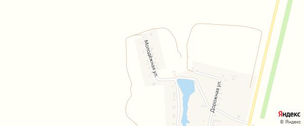 Молодежная улица на карте села Шутнерово с номерами домов