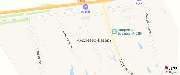 Центральная улица на карте деревни Андреево-Базары с номерами домов