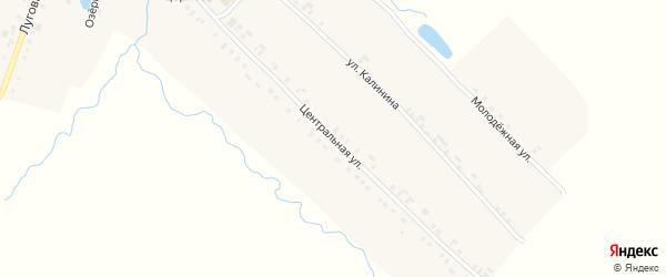 Центральная улица на карте села Кушелги с номерами домов