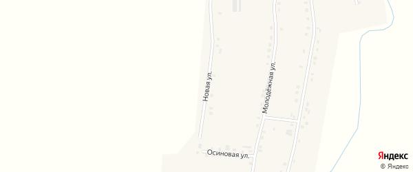 Новая улица на карте деревни Красномайска с номерами домов