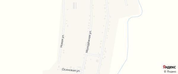 Молодежная улица на карте деревни Красномайска с номерами домов
