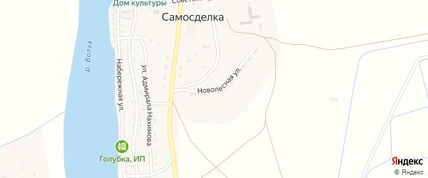Новолесная улица на карте села Самосделки с номерами домов