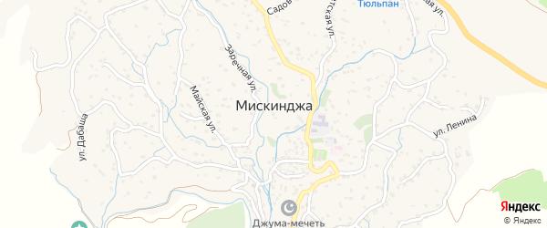 Центральная улица на карте села Мискинджи с номерами домов