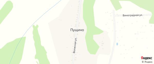 Волжская улица на карте деревни Пущино с номерами домов