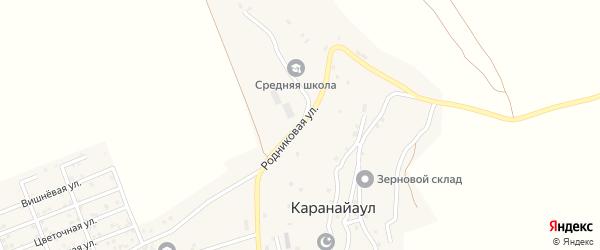 Родниковая улица на карте села Караная Аула с номерами домов