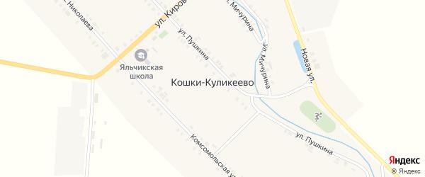 Садовая улица на карте деревни Кошки-Куликеево с номерами домов