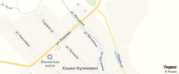 Улица Мичурина на карте деревни Кошки-Куликеево с номерами домов