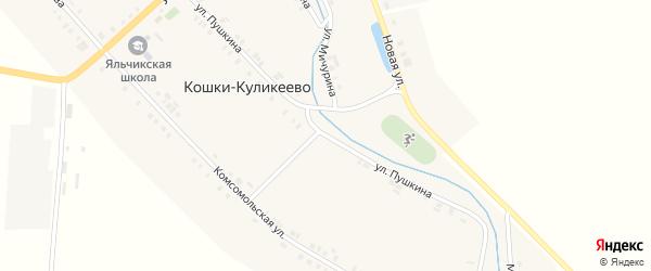 Улица Пушкина на карте деревни Кошки-Куликеево с номерами домов