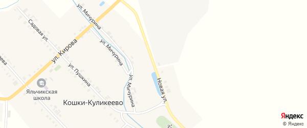 Новая улица на карте деревни Кошки-Куликеево с номерами домов