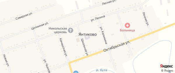 Речная улица на карте села Янтиково с номерами домов