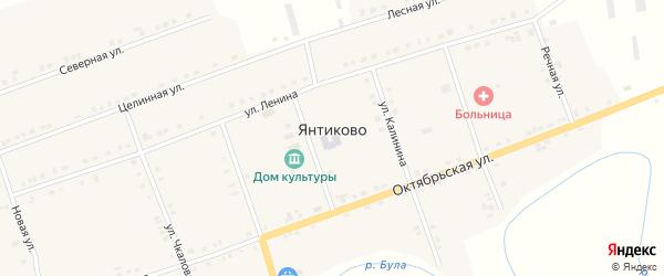 Целинная улица на карте села Янтиково с номерами домов