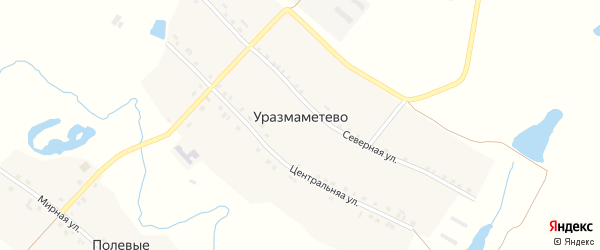 Центральная улица на карте деревни Уразмаметево с номерами домов