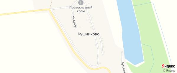 Школьная улица на карте села Кушниково с номерами домов