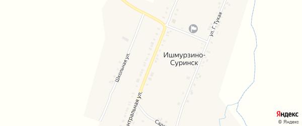 Центральная улица на карте деревни Ишмурзино-Суринска с номерами домов
