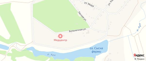 Больничная улица на карте деревни Арабосей с номерами домов