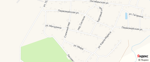 Улица Мичурина на карте деревни Арабосей с номерами домов