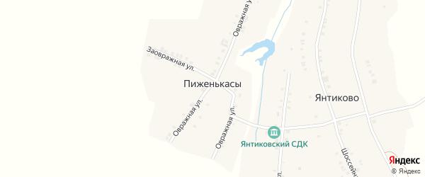 Заовражная улица на карте деревни Пиженькас с номерами домов