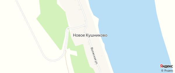 Волжская улица на карте деревни Новое Кушниково с номерами домов