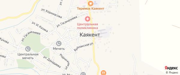 Улица Ю.Акавова на карте села Каякента с номерами домов