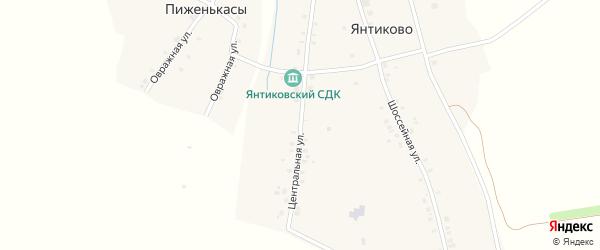 Центральная улица на карте деревни Янтиково с номерами домов